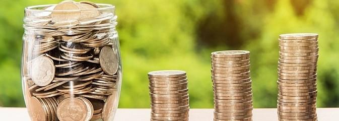 Fundusze dla organizacji społecznych czekają - Serwis informacyjny z Wodzisławia Śląskiego - naszwodzislaw.com